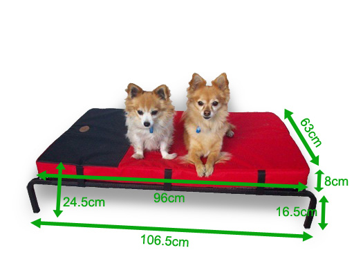 Medium-sized Combo Dog Bed